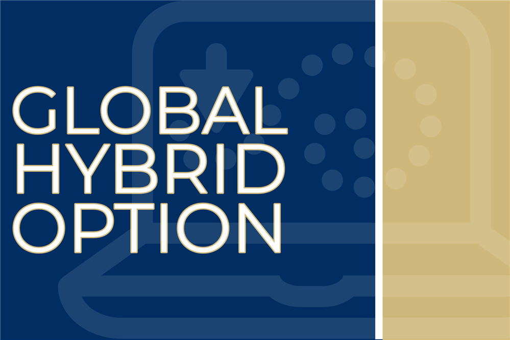 Global Hybrid Option